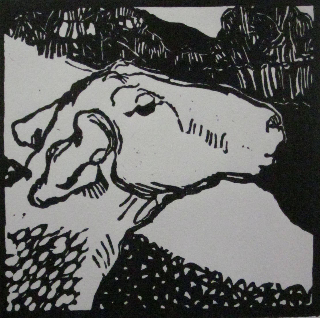 Sheep-lino cut - 2014