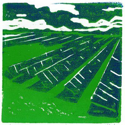 Solar Harvest 1/1