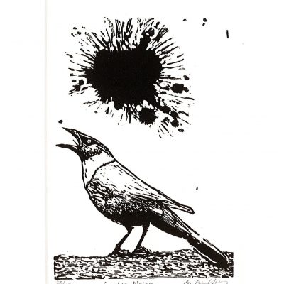 Grackle Noise 20/42