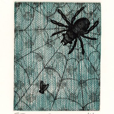 Araña/Spider