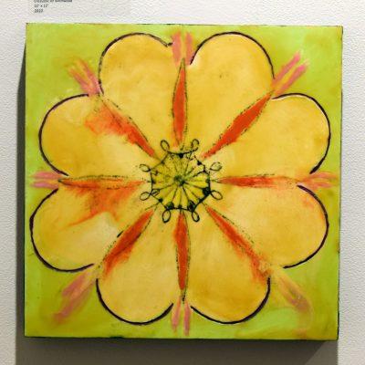 Single Flower Queen Anne Lace