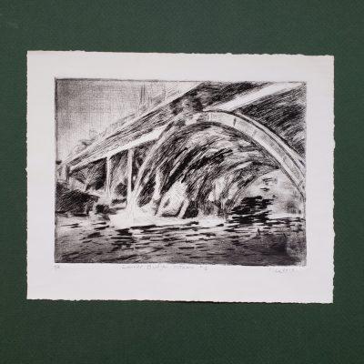 Laurier Bridge, Ottawa #1